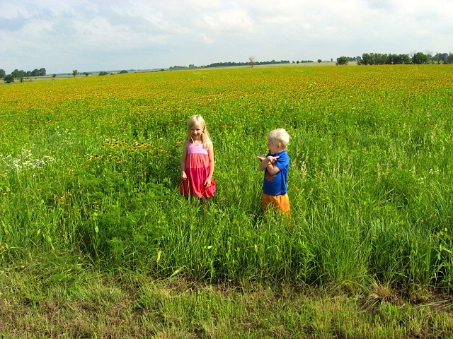 Grandchildren in a meadow with black-eyed Susan in full bloom.