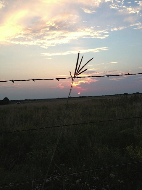 Big Bluestem in a Kansas Sunset Sky