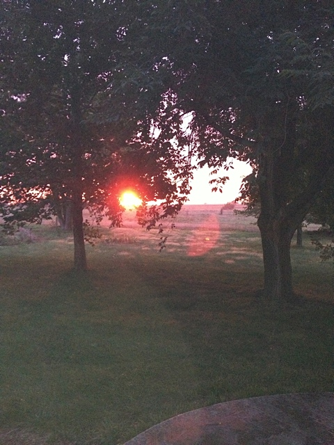 Sunrise at Mettenburg Farm